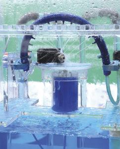 Wassermodel im AUCOTEAM-Prüflabor